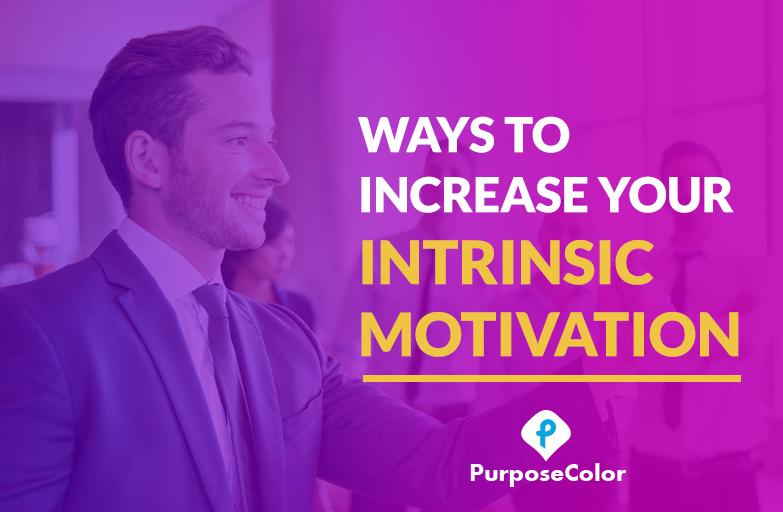 Image of Intrinsic Motivation